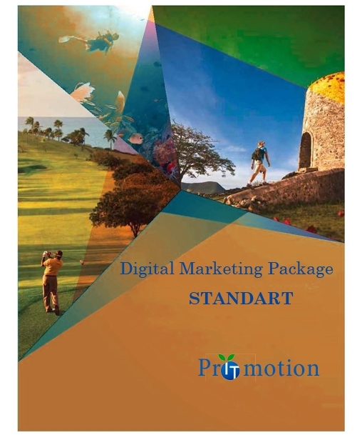 IT promotion Digital Marketing STANDART