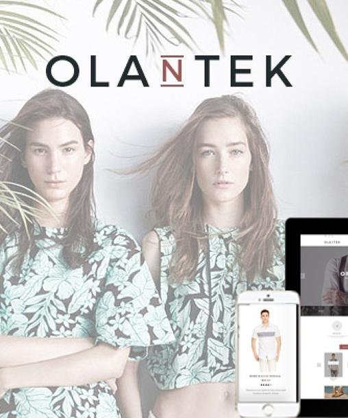Olantek - Responsive  Theme