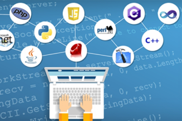 What Programming Language Should You Learn for Web Development?